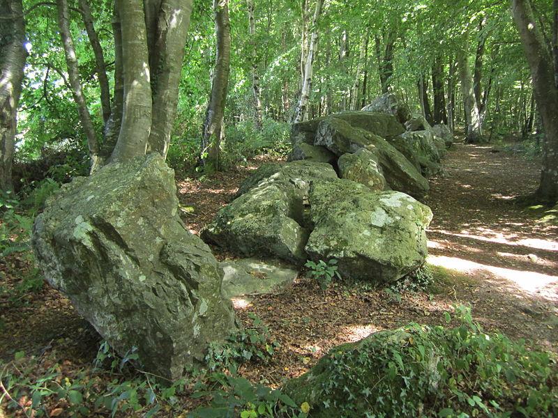 Photo du Monument Historique Allée couverte de la petite Roche situé à Rocheville
