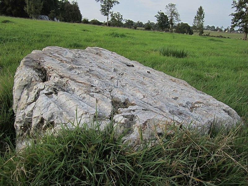 Photo du Monument Historique Polissoir dit La Pierre-Saint-Martin situé à Saint-Cyr-du-Bailleul