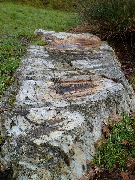 Photo du Monument Historique Polissoir dit La pierre Saint-Benoit situé à Saint-James