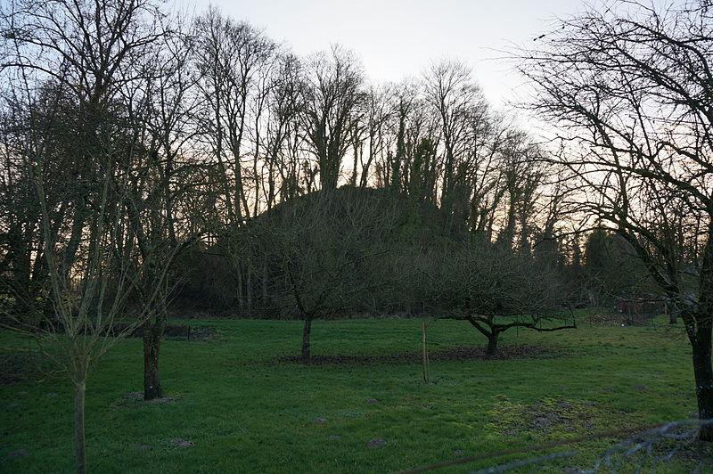 Photo du Monument Historique Tumulus situé à Bussy-le-Château