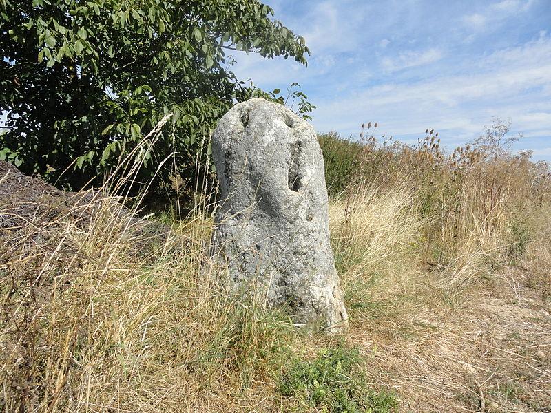 Photo du Monument Historique Menhir de Haute-Borne (également sur communes de Oiry et Avizé) situé à Cramant