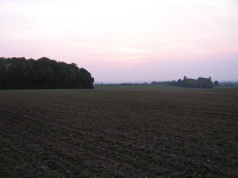 """Photo du Monument Historique Enceinte protohistorique dite """"Camp des Louvières"""" situé à Vitry-en-Perthois"""