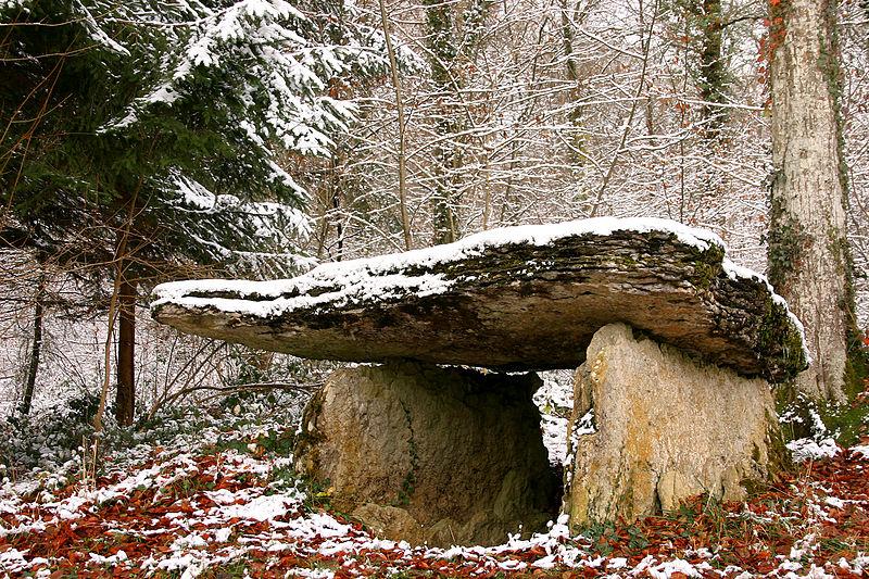 """Photo du Monument Historique Dolmen dit """"Pierre-Alot"""" sis au bois de Lardigny situé à Vitry-lès-Nogent"""