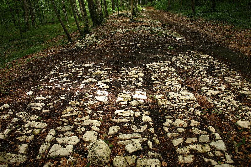 Photo du Monument Historique Site archéologique de Faverolles situé à Faverolles