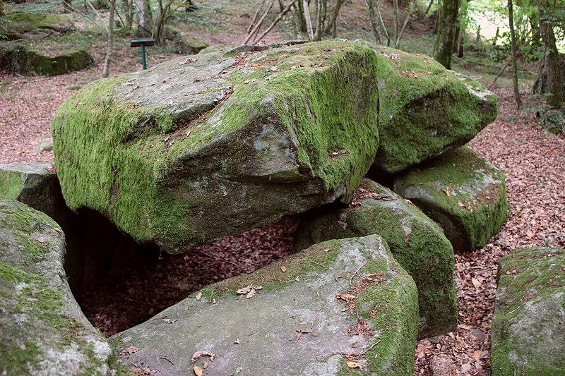 Photo du Monument Historique Dolmen de la Contrie du Rocher situé à Ernée