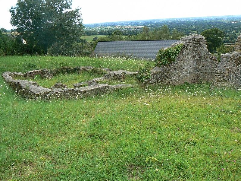 Photo du Monument Historique Camp gallo-romain et balneum de Rubricaire situé à Sainte-Gemmes-le-Robert