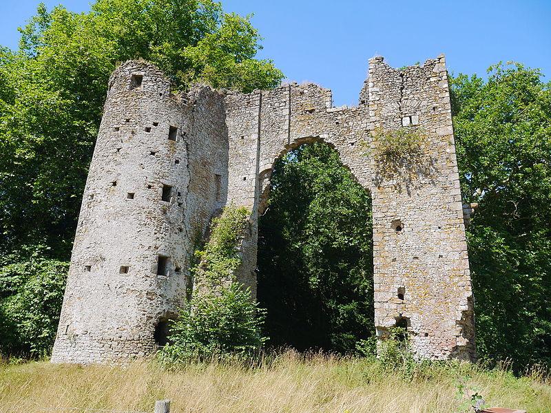 Photo du Monument Historique Château de Courceriers situé à Saint-Thomas-de-Courceriers
