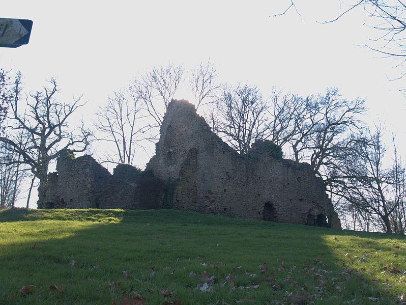 Photo du Monument Historique Château de Chellé situé à Hambers