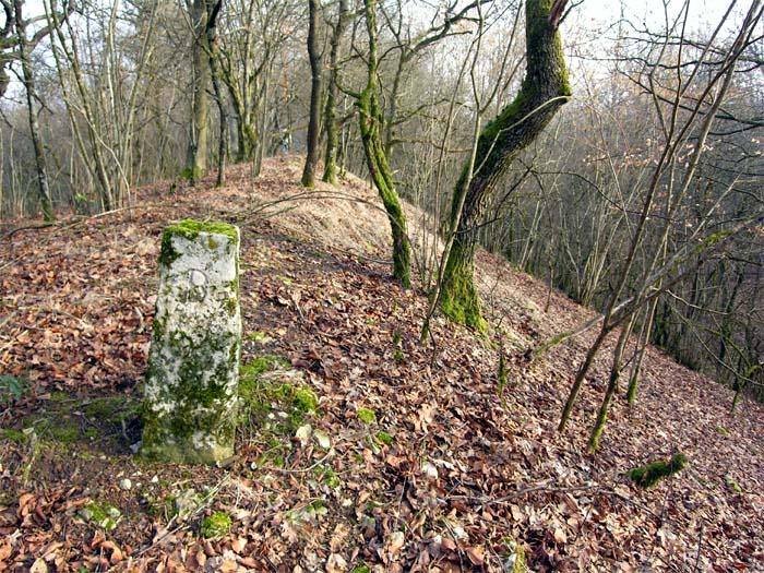 Photo du Monument Historique Site archéologique situé à Boviolles