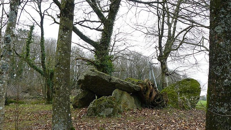 Photo du Monument Historique Allée couverte de Kergonfalz situé à Bignan