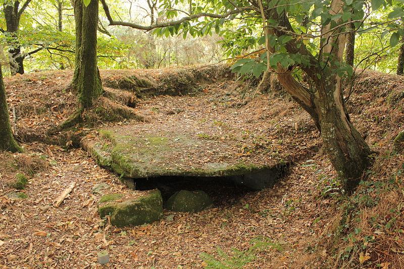 Photo du Monument Historique Dolmen sous tumulus de Kergonfalz situé à Bignan
