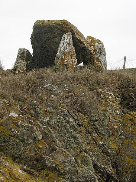 Photo du Monument Historique Dolmen dit Le Crapaud situé à Billiers
