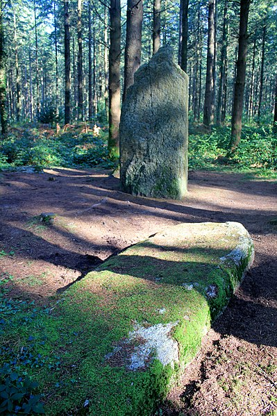 Photo du Monument Historique Deux menhirs situé à Camors