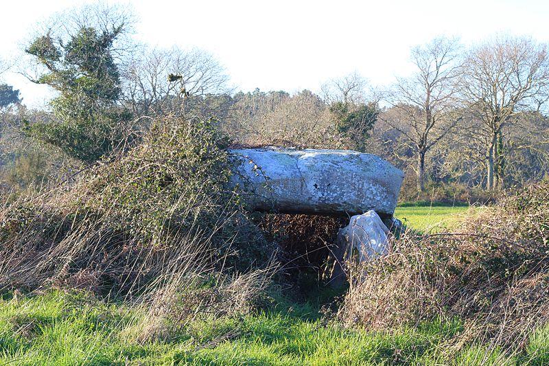 Photo du Monument Historique Premier dolmen à galerie avec la base de son tumulus situé à Carnac