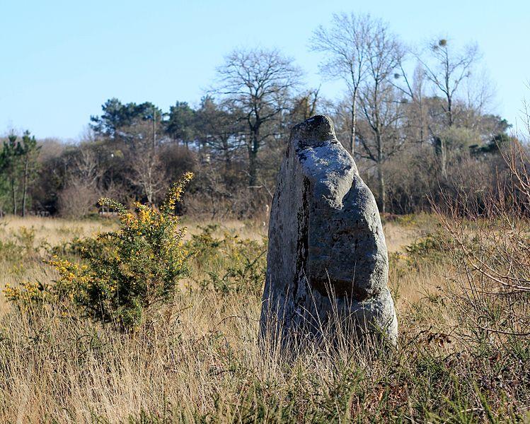 Photo du Monument Historique Menhir de Kergo situé à Carnac