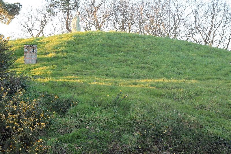 Photo du Monument Historique Tumulus de Crucuny situé à Carnac