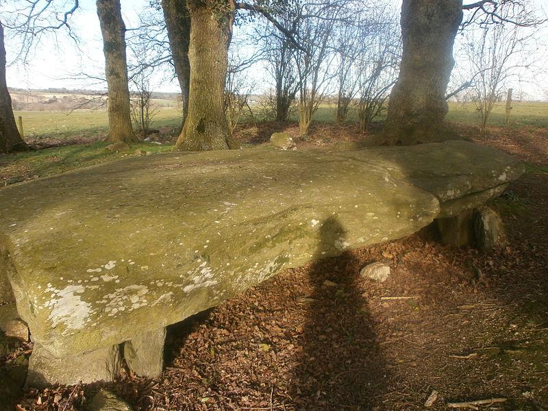 Photo du Monument Historique Tumulus avec dolmen situé à La Chapelle-Caro
