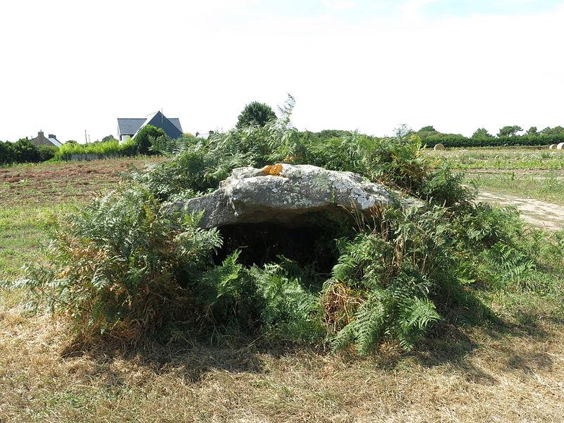Photo du Monument Historique Dolmen à galerie avec les restes de son tumulus situé à Erdeven