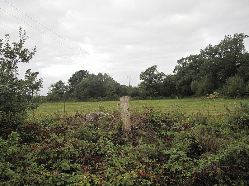 Photo du Monument Historique Tumulus situé à Guiscriff