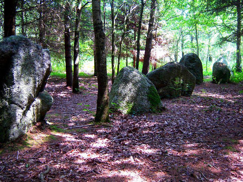 Photo du Monument Historique Alignements du Grand Resto et de Kersolan situé à Languidic