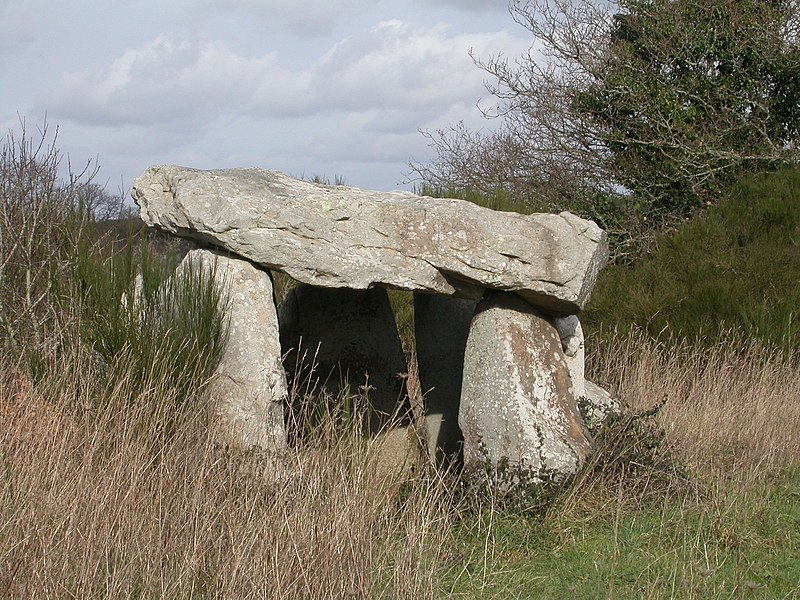 Photo du Monument Historique Dolmen à galerie dit Er-Roh situé à Locmariaquer