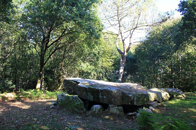 Photo du Monument Historique Dolmen à galerie à support gravé de Mané-er-Loh, dit Mané-Bras situé à Locoal-Mendon