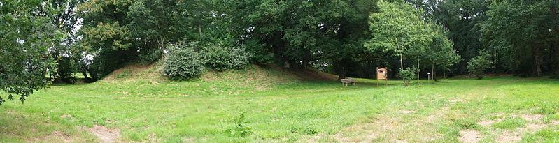 Photo du Monument Historique Camp des Rouëts situé à Mohon