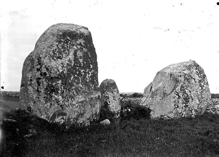 Photo du Monument Historique Vingt-sept menhirs dits de Sainte-Barbe situé à Plouharnel