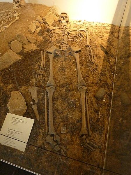 Photo du Monument Historique Ilot de Toul-Bras situé à Quiberon