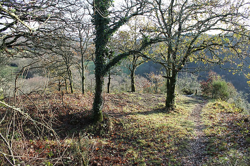 Photo du Monument Historique Camp protohistorique de Kastel-Ker-Nevé situé à Saint-Avé