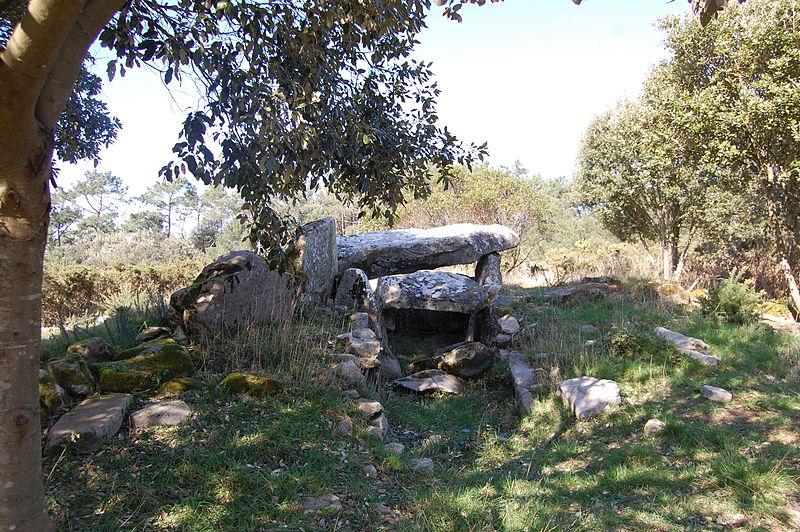 Photo du Monument Historique Dolmen de Mané Rohr situé à Trinité-sur-Mer (La)