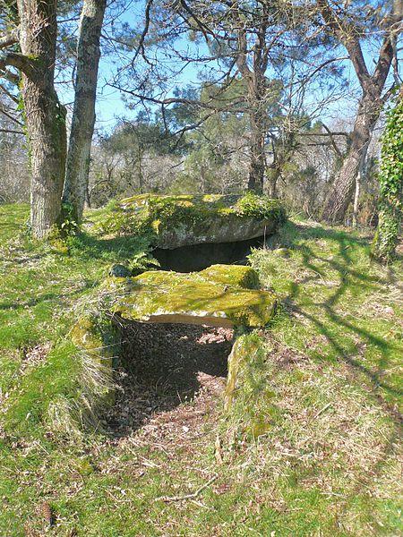 Photo du Monument Historique Trois dolmens à galerie de Mané-Kervilor situé à Trinité-sur-Mer (La)
