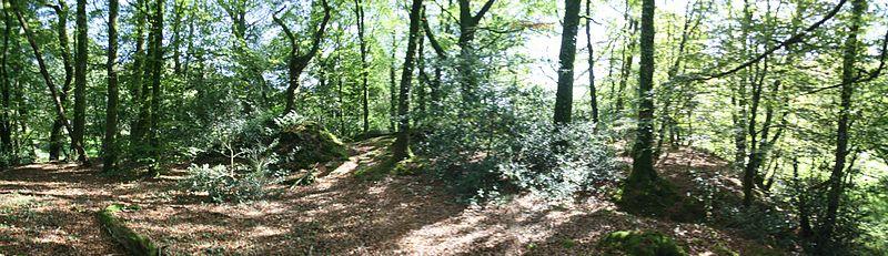 Photo du Monument Historique Motte de Kermain situé à Langonnet