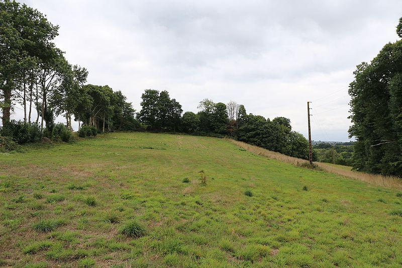 Photo du Monument Historique Site archéologique du Corboulo situé à Saint-Aignan