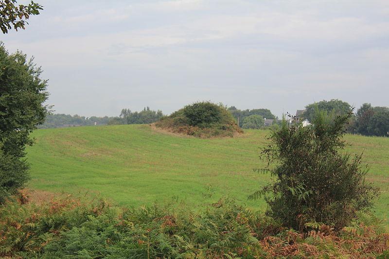 Photo du Monument Historique Vestiges de l'usine de salaison gallo-romaine du Resto situé à Lanester