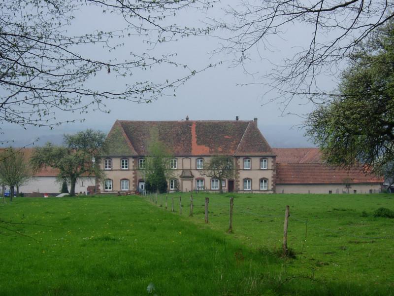 Photo du Monument Historique Château de Gendersberg situé à Hanviller