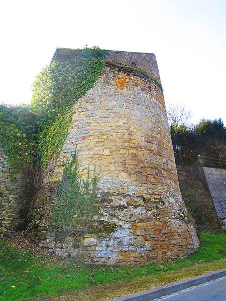 Photo du Monument Historique Châteaux de Roussy-Seigneurie et Roussy-Comté situé à Roussy-le-Village