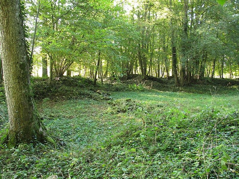 Photo du Monument Historique Vestiges archéologiques situé à Champallement