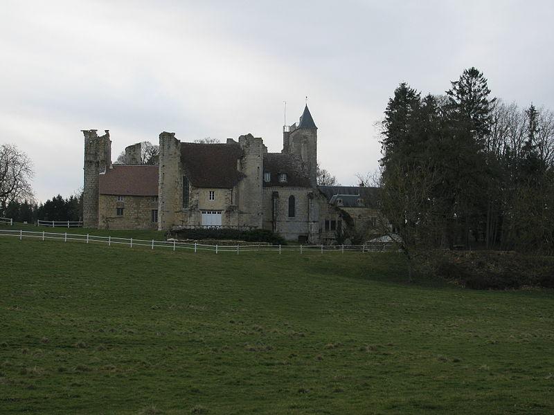 Photo du Monument Historique Prieuré de l'Epeau (restes) situé à Donzy