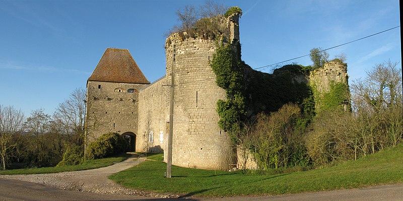 Photo du Monument Historique Château de Rosemont (ruines) situé à Luthenay-Uxeloup