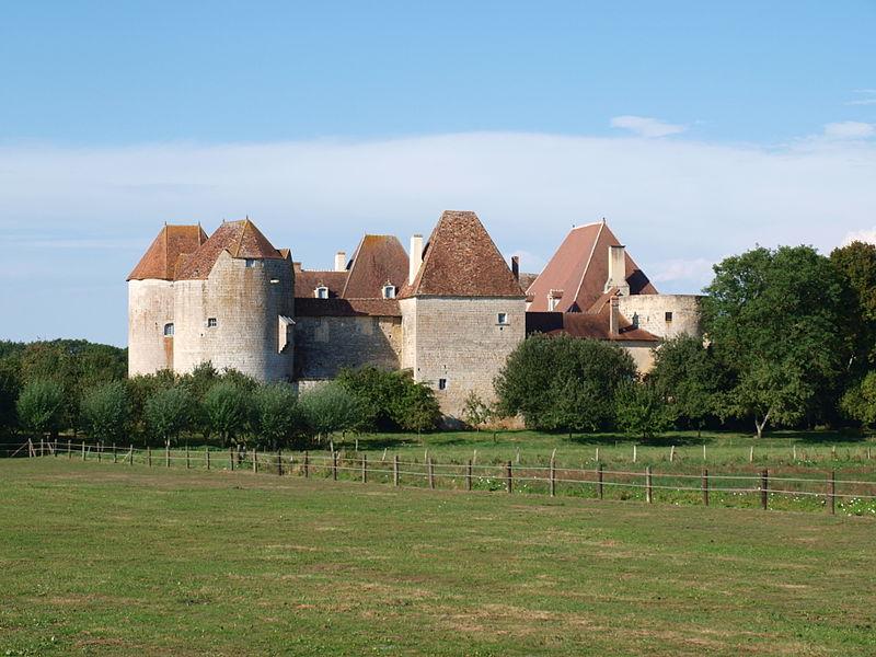 Photo du Monument Historique Château de la Motte-Josserand situé à Perroy
