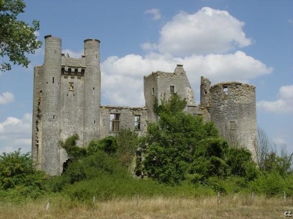 Photo du Monument Historique Château de Passy-les-Tours (restes) situé à Varennes-lès-Narcy