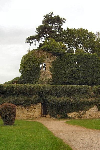 Photo du Monument Historique Ancien château situé à Moulins-Engilbert