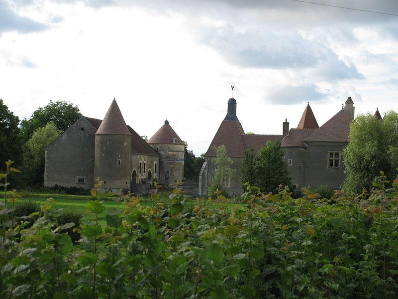 Photo du Monument Historique Château de Villiers, sis à proximité du hameau de Villiers situé à Menestreau