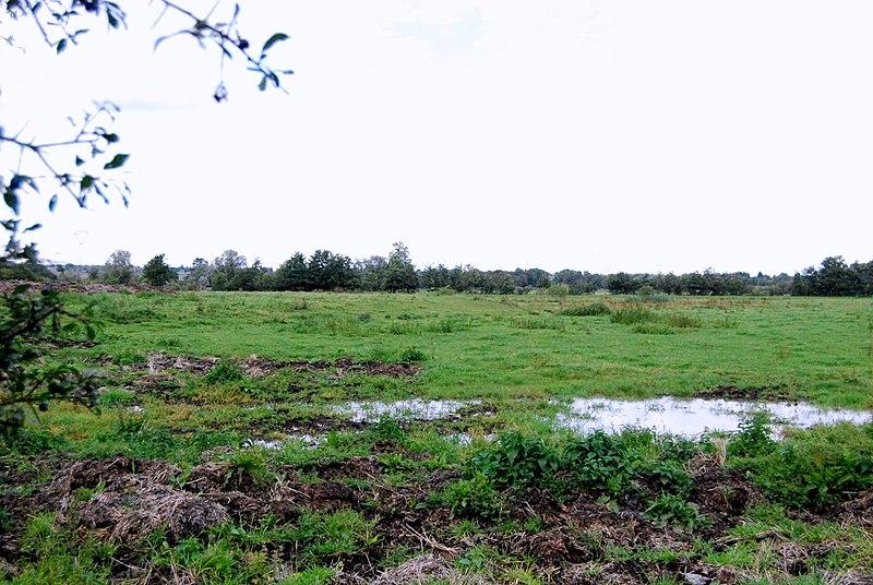 Photo du Monument Historique Motte féodale situé à Aulnoye-Aymeries