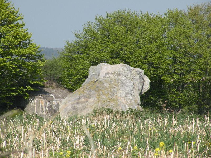 Photo du Monument Historique Deux menhirs dits Pierre Martine situé à Solre-le-Château