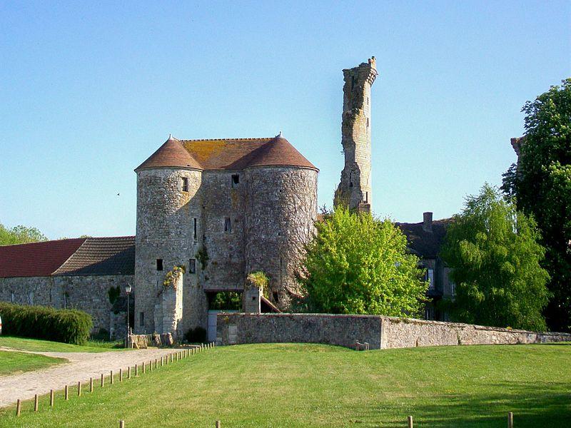 Photo du Monument Historique Restes du château situé à Montépilloy