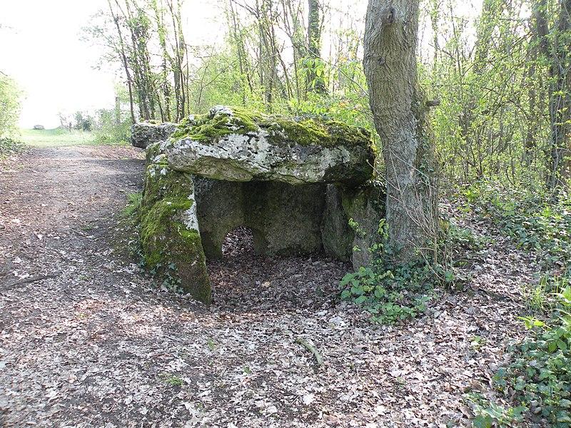 Photo du Monument Historique Dolmen de la Pierre aux Fées situé à Villers-Saint-Sépulcre