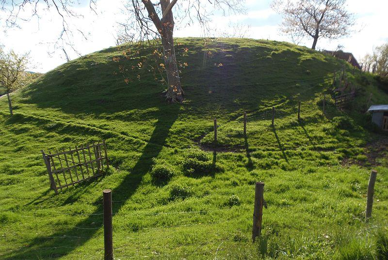 Photo du Monument Historique Motte féodale de Rivray situé à Condé-sur-Huisne