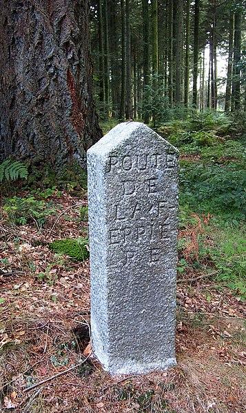 Photo du Monument Historique 80 bornes de la forêt d'Ecouves (également sur communes de Le Bouillon, La Chapelle-près-Sées, Fontenai-les-Louvets, La Lande-de-Goult, Radon, Rouperroux, Saint-Didier-sous-Ecouves, Saint-Gervais-du-Perron, Saint-Nicolas-des-Bois, Tanville et Vingt-Hanaps situé à La Ferrière-Béchet